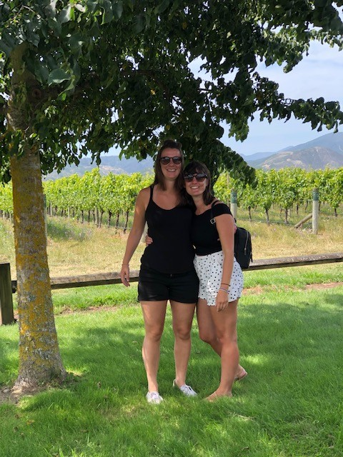 misty cove vineyard