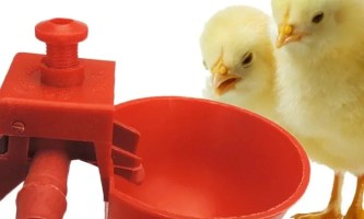 10 Best Chicken Plucker 2019 - Top Pick's By an Expert