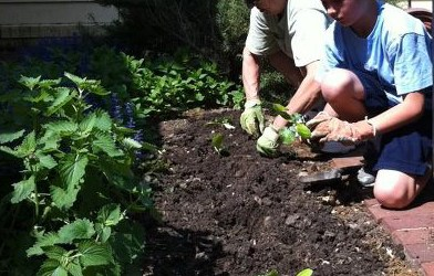 Vegetable Gardening with Kids