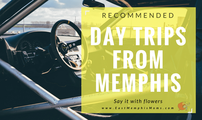 Day Trips from Memphis - see the full list on EastMemphisMoms.com