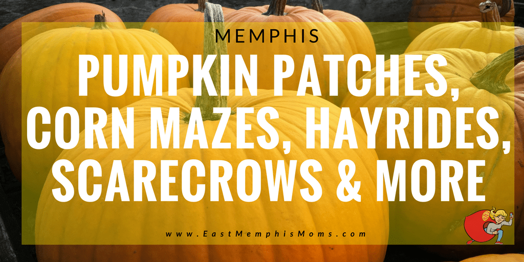 Memphis Pumpkin Patches