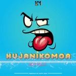 Harmonize – Hujanikomoa