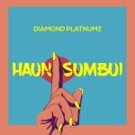 Diamond Platnumz – Haunisumbui (Lyrics)