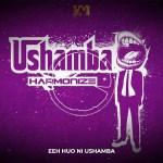 [Video] Harmonize – Ushamba