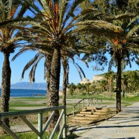COAST, VILLAGES OR COUNTRYSIDE: WHERE TO VISIT ORLIVE IN THE AXARQUÍA