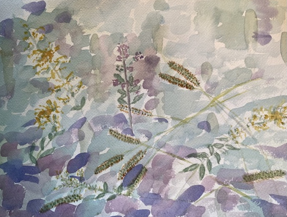 Creating watercolors is a passion and also a form of therapy for Cleo Sonneborn.