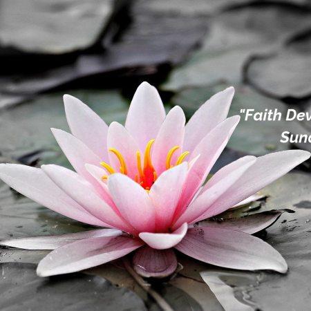 Faith Development Sunday