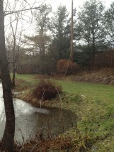 Our power lines in the pond...