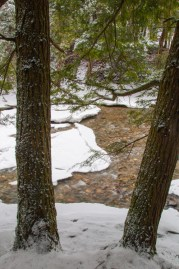 Open water on the Huntington River between a pair a hemlocks.