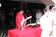 Father Rodel Faller blesses the palms before Mass.