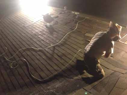 Midnight roofing