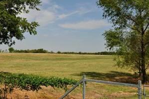 163-lamar-county-near-paris-texas-6