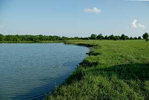395-acres-stocked-fishing-lake-paris-tx_lake