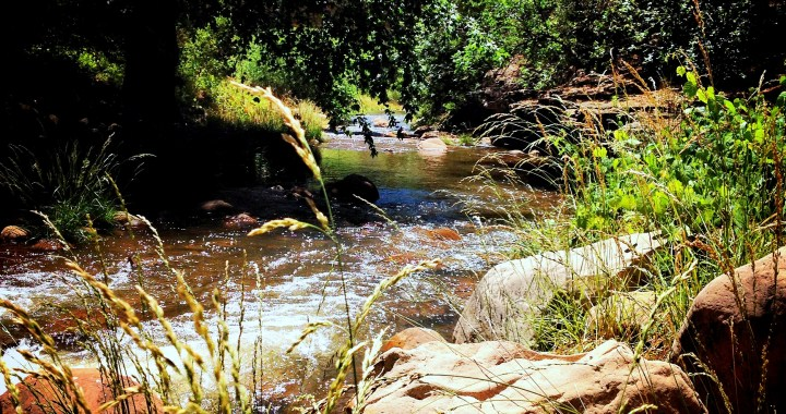 2014 Arizona Fish Game Trout Stocking Schedule East
