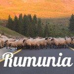 Zdjęcia z Rumunii