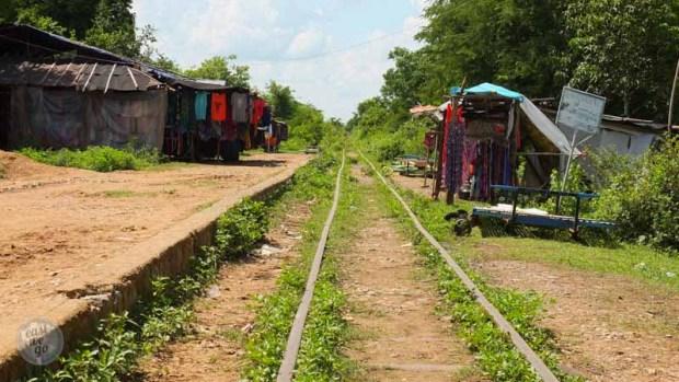 bamboo train-12