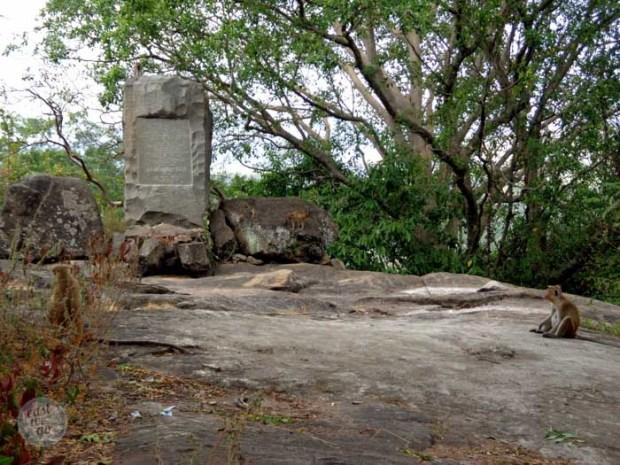 Sri Lanka-9