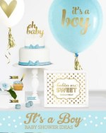 Baby Shower for Boys