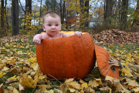 little baby inside pumpkin photo