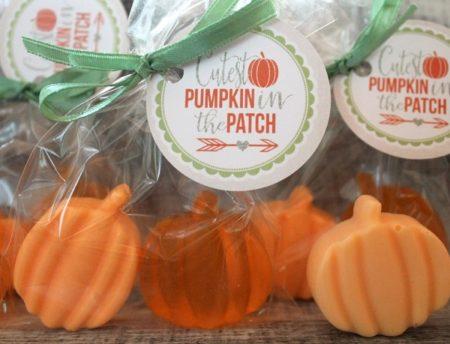 Handmade pumpkin soap in favor bag