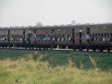 Maitojuna Biharissa