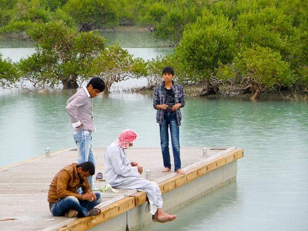 Haran mangrovemetsä on lintuparatiisi.