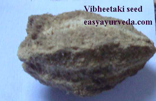 Bibhitaki (Baheda) Terminalia bellirica: Uses, Research