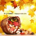 Ayurvedic Health Tips For Autumn Season