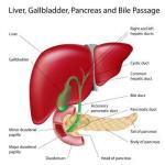 Liver Diseases: Causes, Symptoms, Treatment, Home Remedies