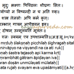 Kshara: Properties, Types, Preparation Method As per Sushruta