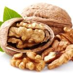 Walnut – Juglans regia Uses, Research, Remedies