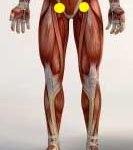 Vitapa Marma: Anatomical Location, Effect Of Injury