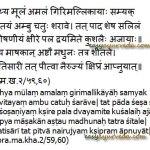 Kutaja (Conessi bark) Milk Remedy For Diarrhea, Dysentery, Colitis