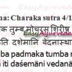 Vedanasthapana Gana – Pain Relieving Group Of Herbs Review, Benefits