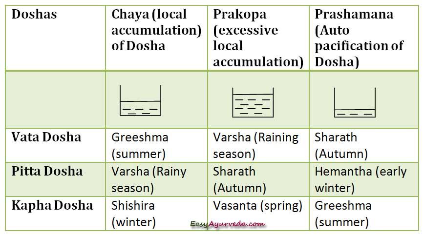 Relationship Of Doshas With Seasons   Easy Ayurveda
