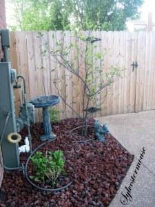 Weed-proof flower beds & gardens
