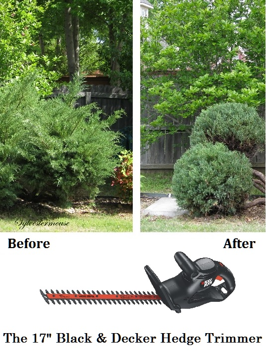 "17"" Black & Decker Hedge Trimmer - The Best Gardening Power Tool"