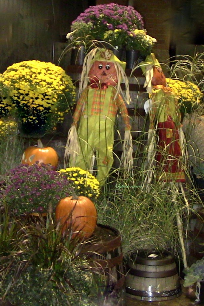Beautiful Fall Yard or Porch Displays