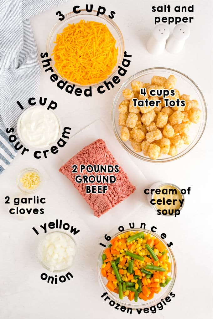 An overhead picture of all of the ingredients needed to make this recipe.