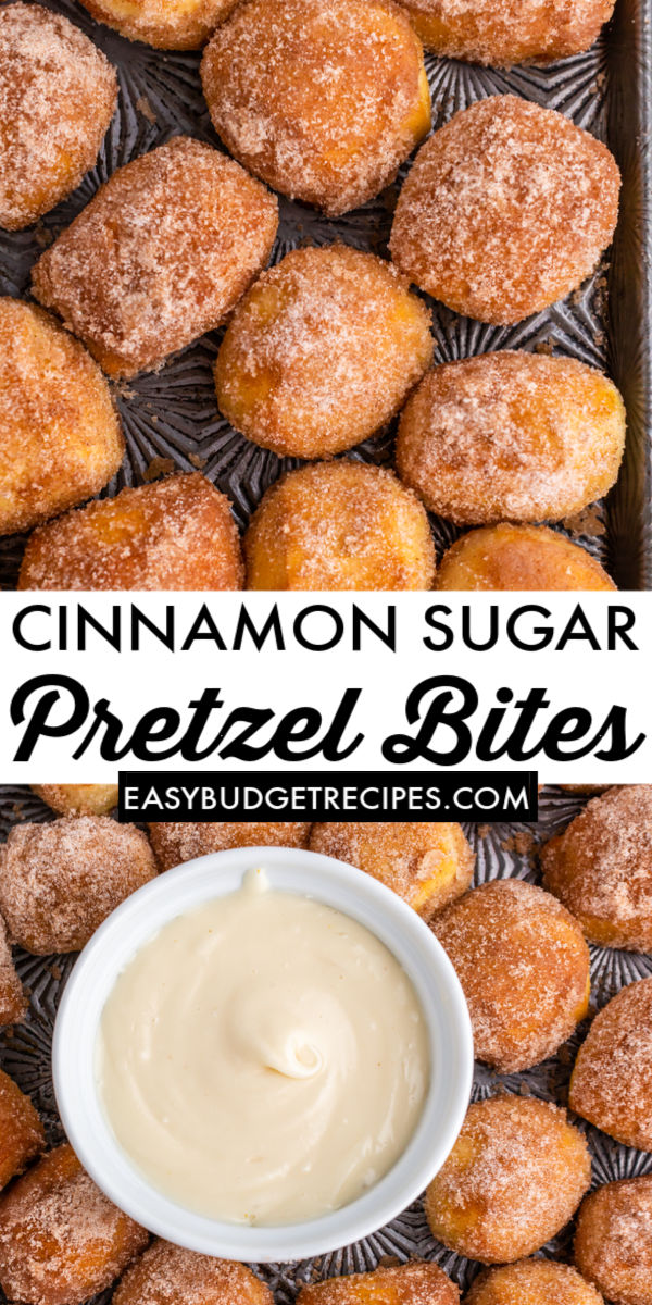 This Copycat Cinnamon Sugar Pretzel Bites recipe is soft, buttery, and fun to make! Grab the kids because they'll love making this classic food court snack with you! via @easybudgetrecipes
