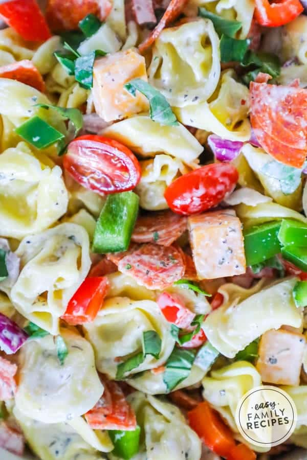 Delicious tortellini salad is an easy and delicious meal to make for the whole family.