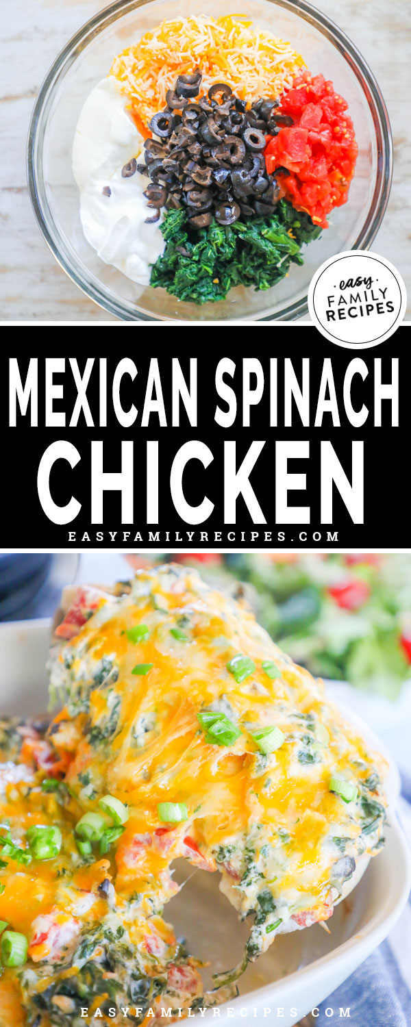 Mexican Spinach Chicken Ingredients including cream cheese, cheddar cheese, rotel tomatoes, spinach