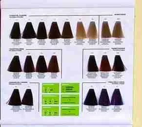010Plus -10 minute hair colour chart - the reds