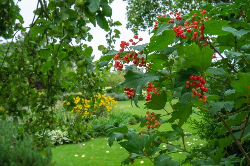 Countryside garden 10