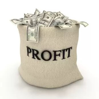 online profits in bags of money