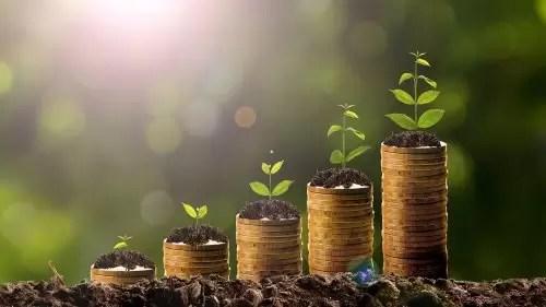 29 Ways to Increase Profit Margins