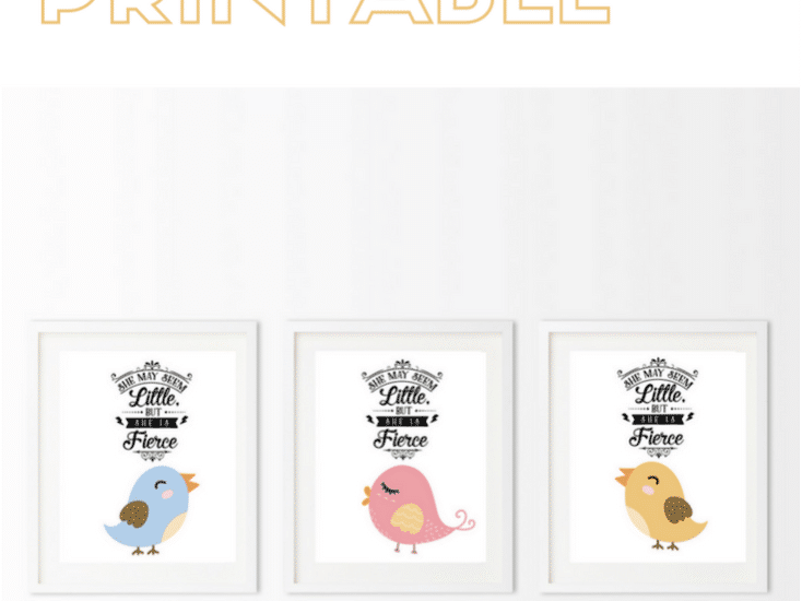 Celebrate the birth of a new baby - Free Birdie Printable. Click through to www.easyonthetongue.com