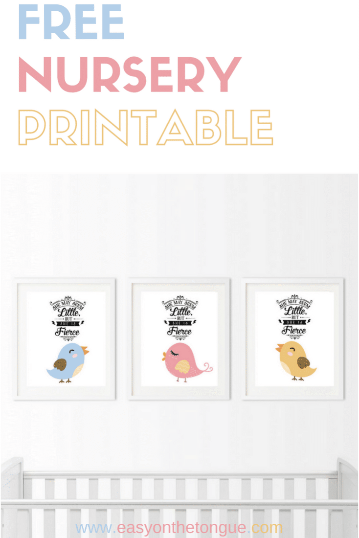 Celebrate the birth of a new baby Free Birdie Nursery Printable Celebrate the birth of a new baby – Free Birdie Printable