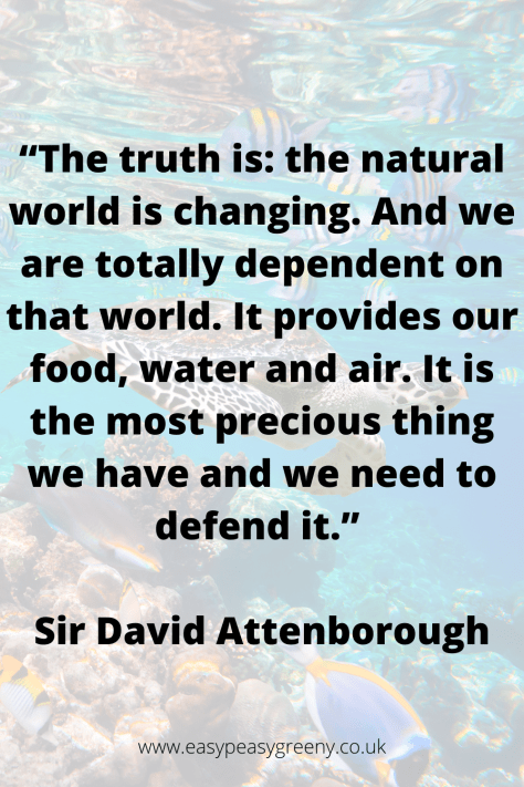 """""""The truth is: the natural world is changing. And we are totally dependent on that world. It provides our food, water and air. It is the most precious thing we have and we need to defend it."""" Sir David Attenborough"""
