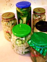 pickled goodness 3A